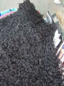 Sherpa & Sherpa Lining Fabric Textile Machine pictures & photos