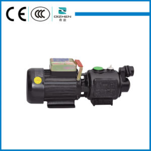 Self Suction Screw Pump pictures & photos