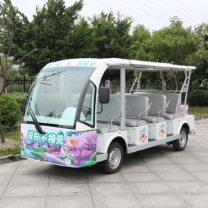 China Manufacturer 11 Seats Tourist Bus with Price (DN-11) pictures & photos