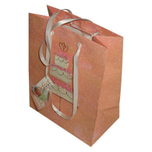 Paper Shopping Gift Bag for Packing and Shopping pictures & photos