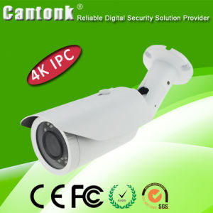 3.1MP WDR H. 265 Sony Waterproof IP66 Security CCTV IP Camera pictures & photos