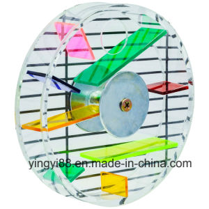 2016 Newest Design Acrylic Bird Foraging Toy, Parrot Creative Foraging Systems pictures & photos