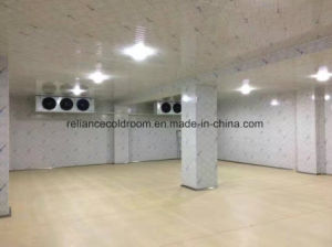 Cold Room for Storage of Fruit, Vegetable and Meat pictures & photos