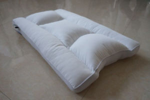 Healthy Polyester Pillow pictures & photos