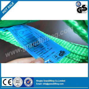 Ce GS Lifting Webbing Polyester Sling pictures & photos