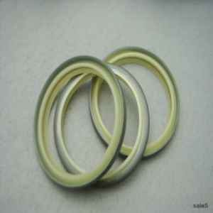 Good Quality Hydraulic Dkbi Oil Seal,  Dkb Oil Seal pictures & photos