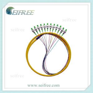 12 Cores Fanout Single Mode Fiber Optic Patch Cable pictures & photos