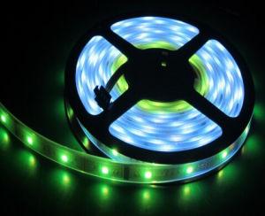 IP67 SMD5050 30LED/M LED Strip Light