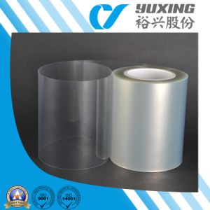 Clear Polyester Pet Film (CY20DW) pictures & photos