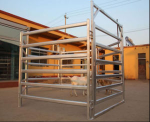 Australia Oval Rails Cattle Livestock Stockyard Fence Panels/Sheep Panels pictures & photos