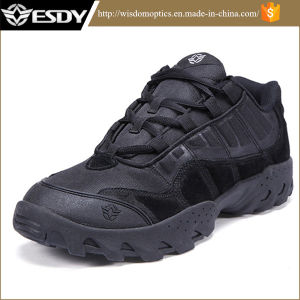 Tactical Military Army Training Assault Training Hiking Shoes for Sports pictures & photos