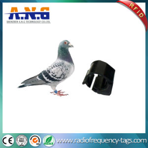 134.2kHz Passive RFID Racing Homing Pigeon Ring pictures & photos
