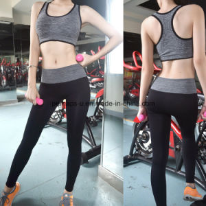 Good Quality Work out Quickly Dry Yoga Pants Women Wear pictures & photos