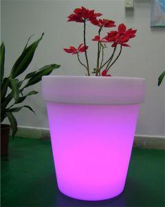 LED Big Flower Pot Fl012A pictures & photos