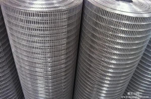 Welded Mesh pictures & photos