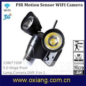 WiFi Surveillance Real-Time 720p Floodlight Camera with PIR Motion pictures & photos