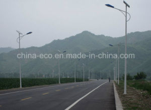 30W Solar Street Light with Competitive Price
