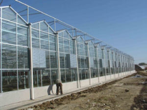 UV Coating 6mm Twinwall Hollow Polycarbonate Sheet Greenhouse pictures & photos