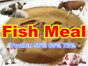 Anchovy Fish Meal for Feed with Lowes Price pictures & photos