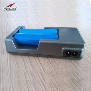 18650 Battery Charger for 3.7V Rechargeable Lithium Battery pictures & photos