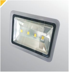 Super High Power 10W 30W Stadium Lighting Aluminum Housing LED Outdoor Flood Light pictures & photos