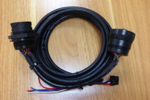 J1939 9p M to F +Molex 12p Cable pictures & photos