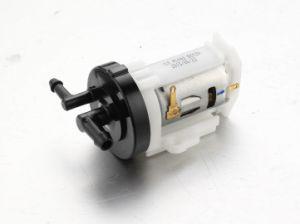 Wind Pump/ Micro Motor Pump