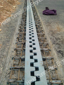 Long Finger Bridge Expansion Joint in China pictures & photos