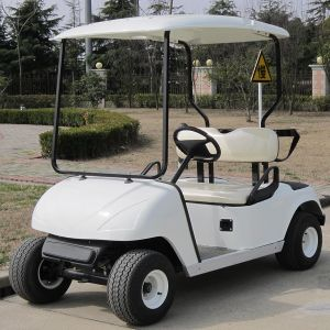 China Marshell Produce Electric Golf Car with 2 Seats (DG-C2) pictures & photos