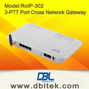 RoIP 302 Cross-Network Gateway/Intercom System pictures & photos
