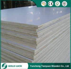 Best Price Excellent Grade Melamine Friendly Furniture Eco Plywood 1220X2440mm pictures & photos