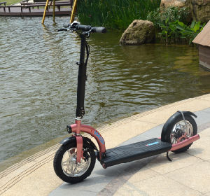 Push Start 300W Motorized City Foldable Scooters with Ce pictures & photos