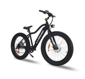 26inch Lithium Battery Alu Alloy Frame Fat Ebike pictures & photos