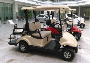 4 Seater Battery Operated Golf Car/Buggy/Trolley pictures & photos