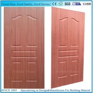 Moulded Door Skin Plywood with Door in Door Style pictures & photos
