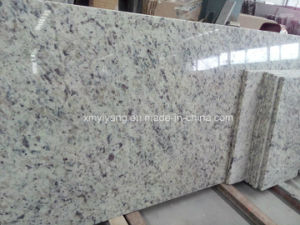 White Rose Prefabricated Slab Grantie Kitchen Countertop pictures & photos