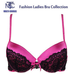 Ladies Sexy Bra New Design with Lace
