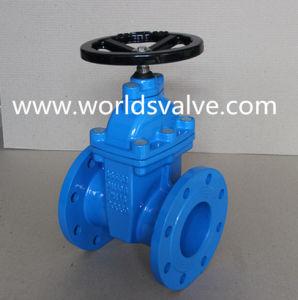 BS5163 Ductile Iron Sluice Valve pictures & photos