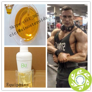 Anabolic Liquid Equipoise/EQ Steroid pictures & photos