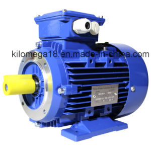 Three Phase Cast Iron Electric Motor with Ce Certificate pictures & photos
