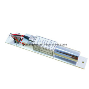 Electronic Electric Bolt Lock (EB200A) pictures & photos