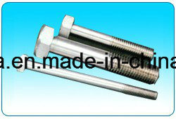 Stainless Steel Hex Bolt with Hex Nut and Washer pictures & photos