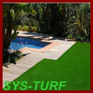 10 Height Landscaping Grass Around Swimming Pool pictures & photos
