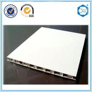 Suzhou Beecore Aluminum Honeycomb Panel for Indoor Partition Material pictures & photos