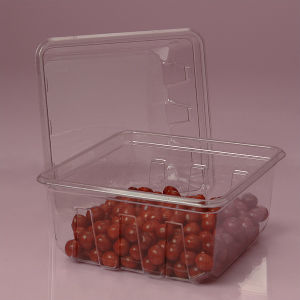 Eco-friendly Disposable Plastic Food Tray for fruit meat (PP tray) pictures & photos