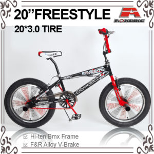 20 Inch BMX Freestyle Bike (ABS-2056S) pictures & photos