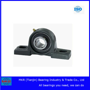 China Supplier Best Price Pillow Block Bearing pictures & photos