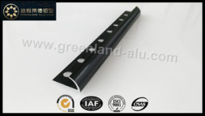 Glt171 Aluminum Round Edge Trim Brushed Silver for Ceramic Tile to USA pictures & photos