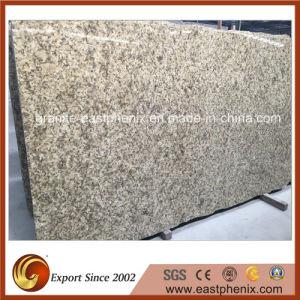 Brazil Giallo Fiorito Granite Stone Big Slab pictures & photos