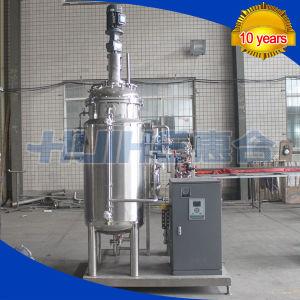 Beer Fermentation Tank/ Fermenter China Manufacturer pictures & photos
